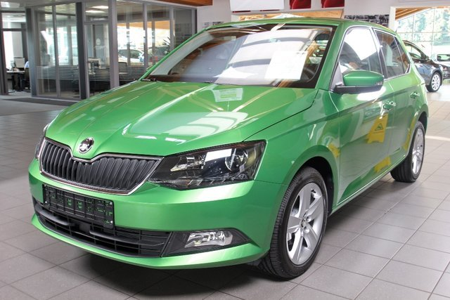 skoda rallyegr n metallic. Black Bedroom Furniture Sets. Home Design Ideas